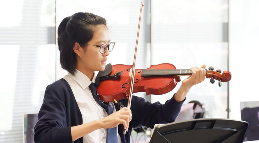 5 violin